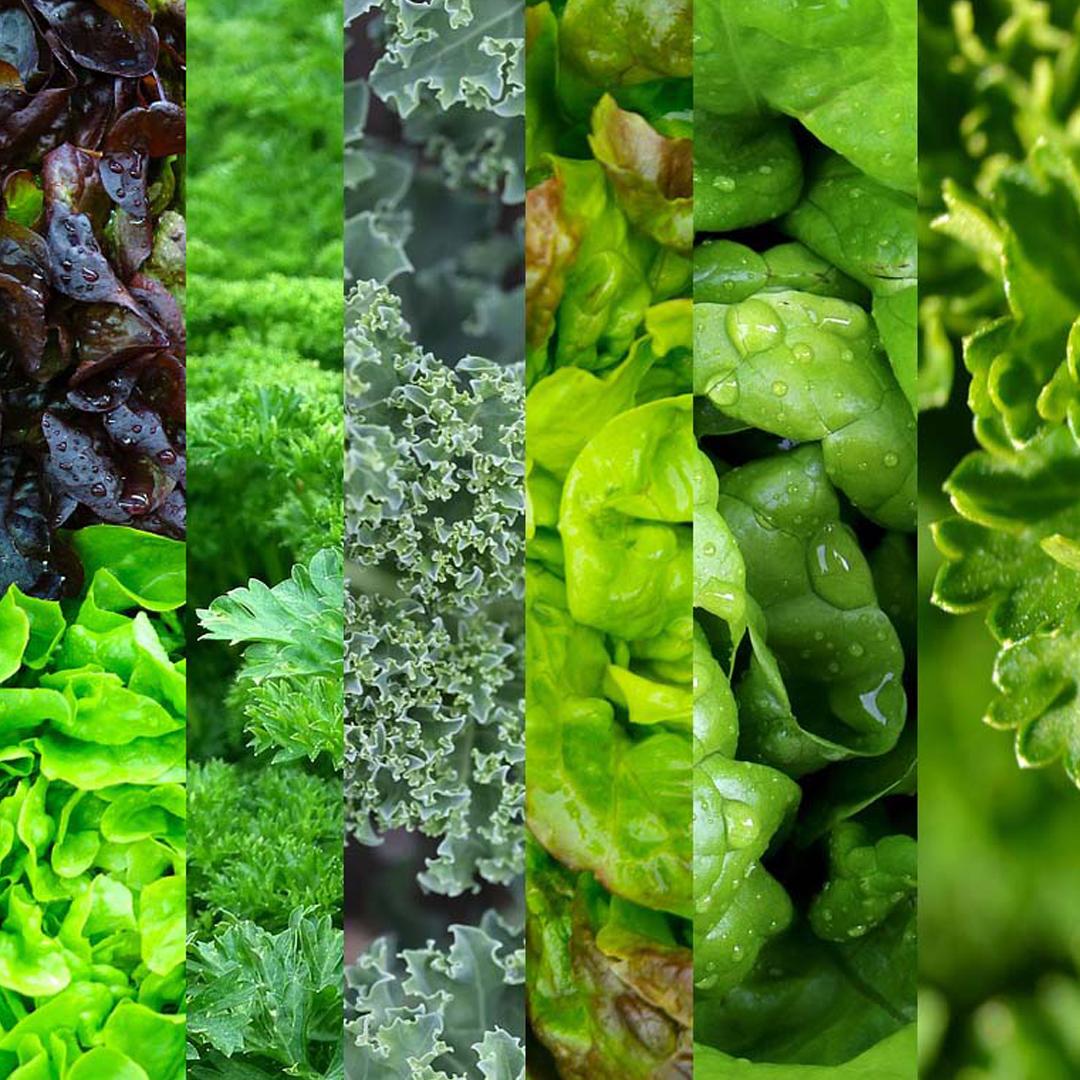 Green Gem Asparagus: 4-week Healthy Eating Challenge: Week 2